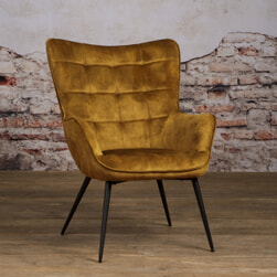 Tower Living Fauteuil 'Badia' Velvet
