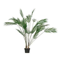 WOOOD  'Palm'
