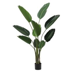 J-Line Kunstplant 'Strelitzia'