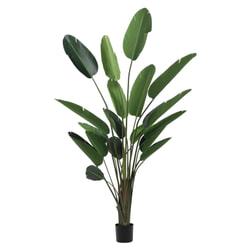J-Line Kunstplant 'Strelitzia' 245cm
