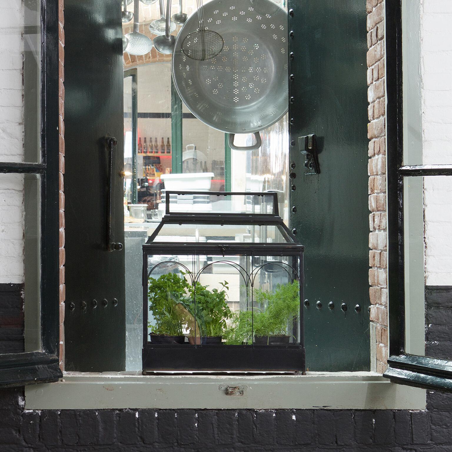 BePureHome Plantenhouder 'Grow', kleur Zwart Metaal met glas aanschaffen? Kijk hier!