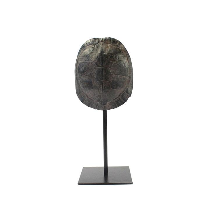 By-Boo Schildpaddenschild 'Katana' small, kleur Bruin Polyresin & metaal aanschaffen? Kijk hier!