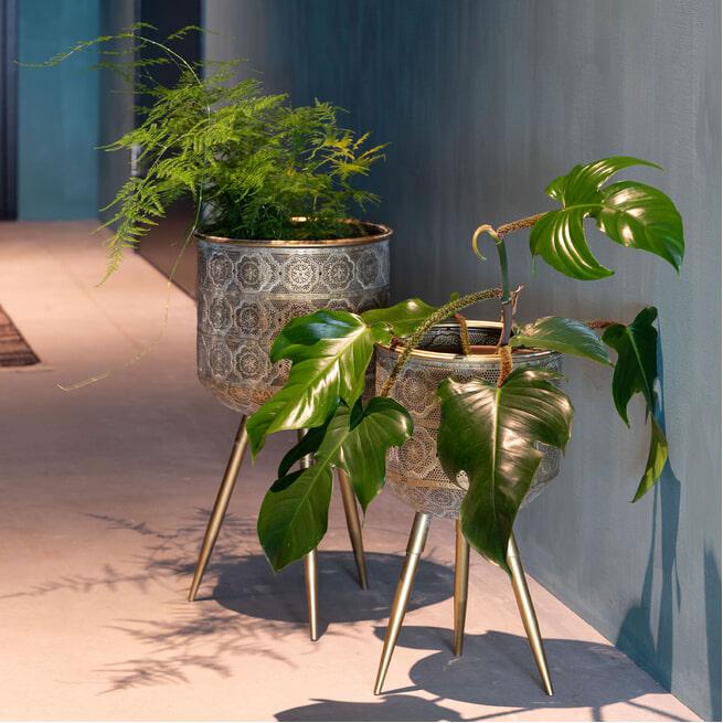 Dutchbone Plantenstandaard 'Botanique'