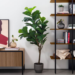 Kave Home Kunstplant 'Ficus'